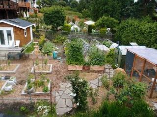 Nosy Neighbor Urban Homestead And Garden Tour 2011