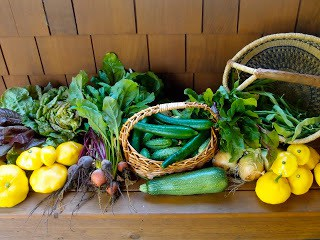 I Grew Some Vegetables, Now What?