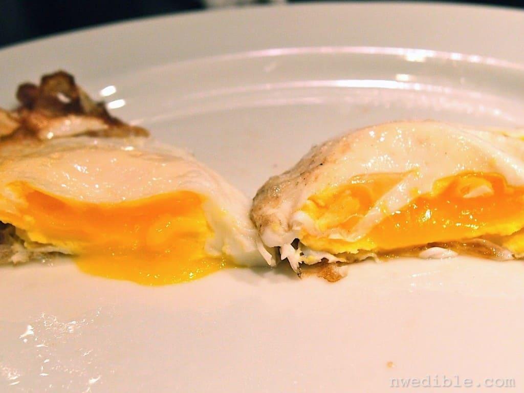 Backyard vs Store Eggs99