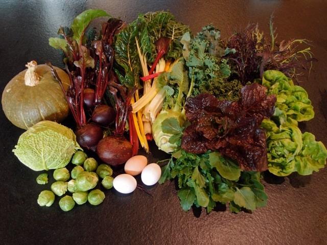 January 8 2012 Harvest