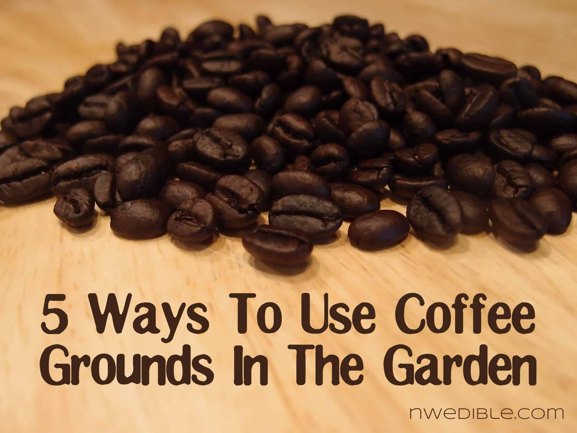 Throwing a children s book themed baby shower Coffee grounds for garden