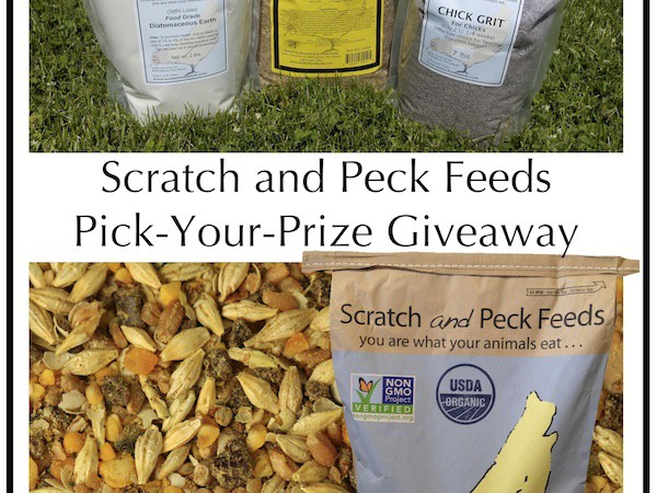 {Giveaway} Scratch and Peck Organic Chicken Feed