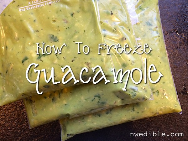 How To Make and Freeze Guacamole