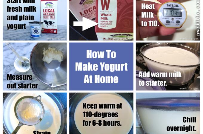 Do You Need To Heat Milk For Yogurt Making?