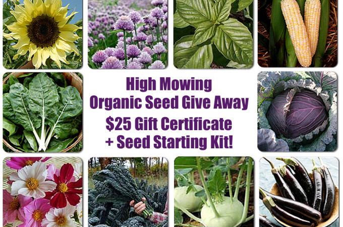 {Giveaway!} $25 in High Mowing Organic Seeds and Complete Seed Starting Kit