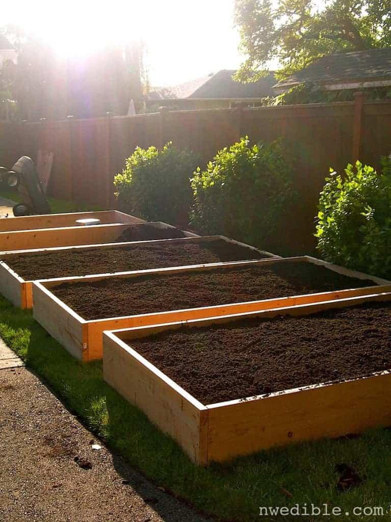 Umgestaltung vom rasen zum garten in 6 einfachen for Gartenbeet modern