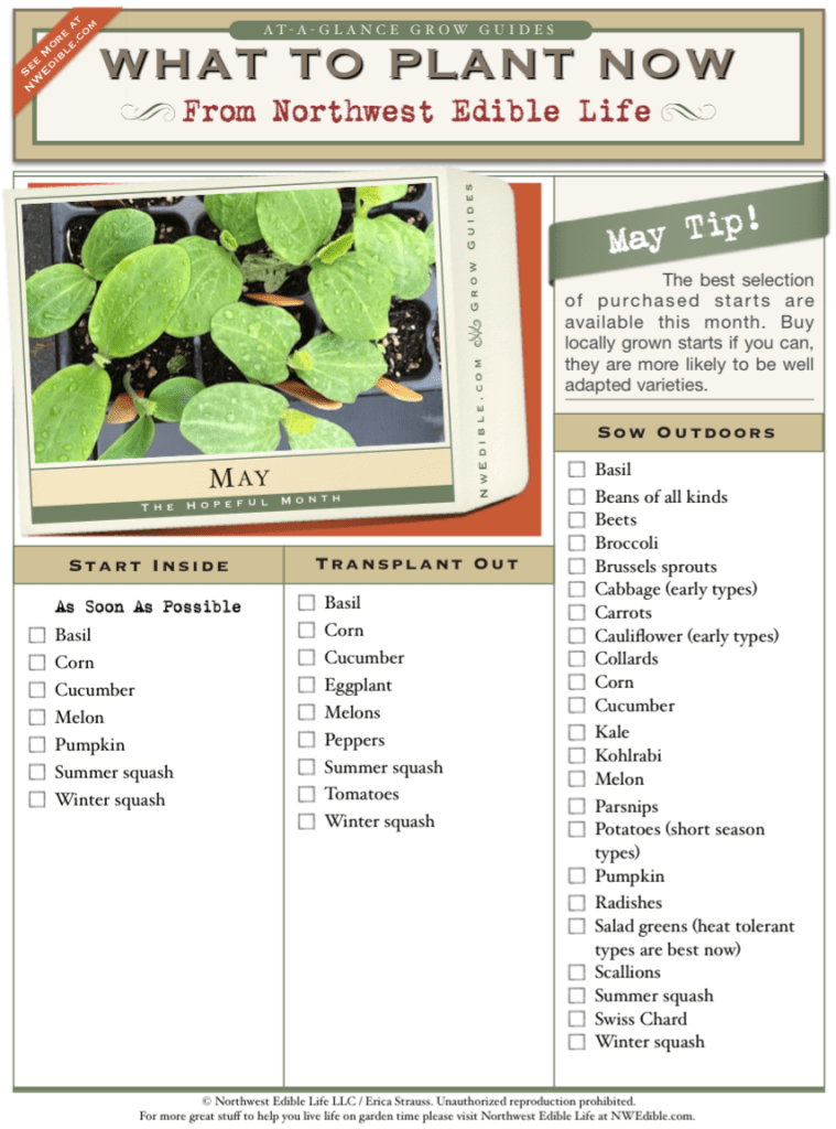 What To Plant Now At A Glance May