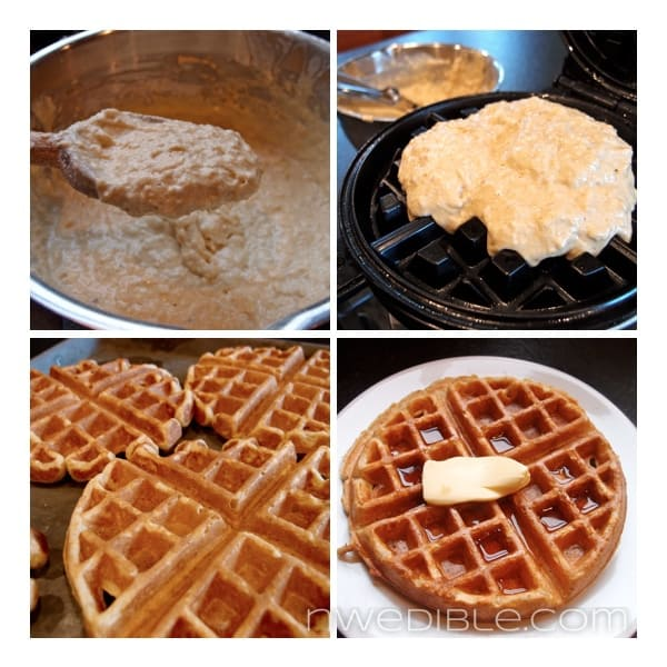 Whole Wheat Waffle Visual Guide 2