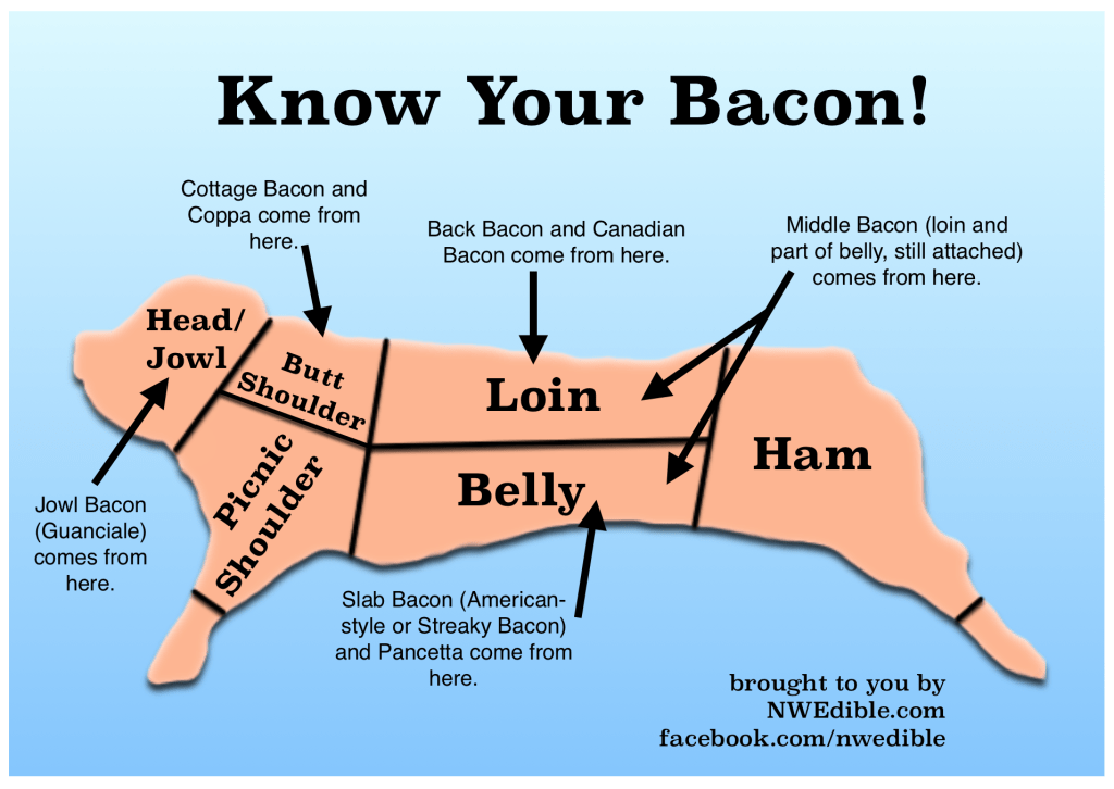 Know Your Bacon!
