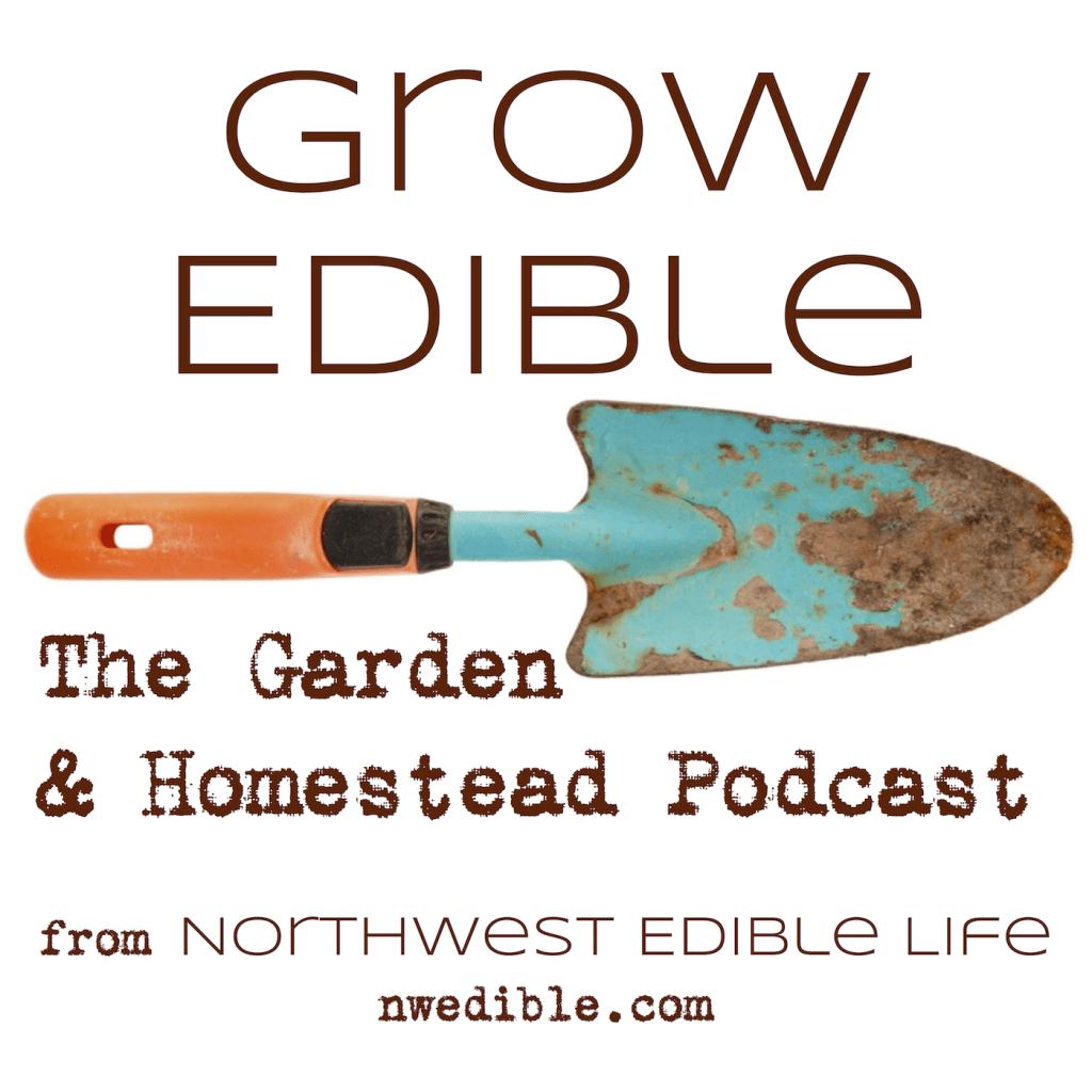 podcast-graphic-iTunes