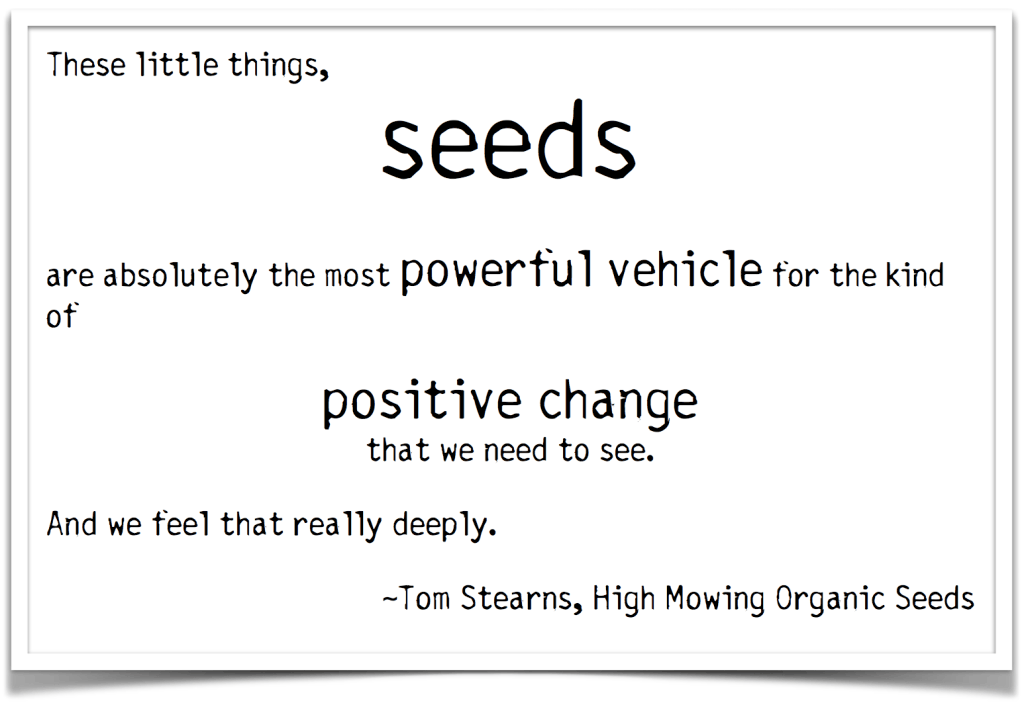 seeds quote tom stearns