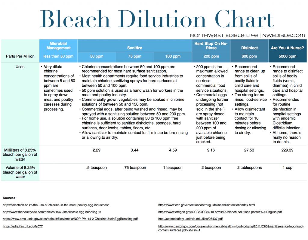 Bleach Visual 1
