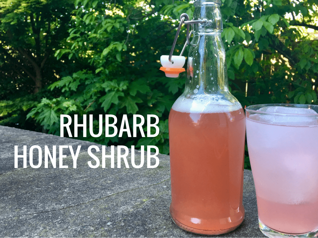 Rhubarb Honey Shrub