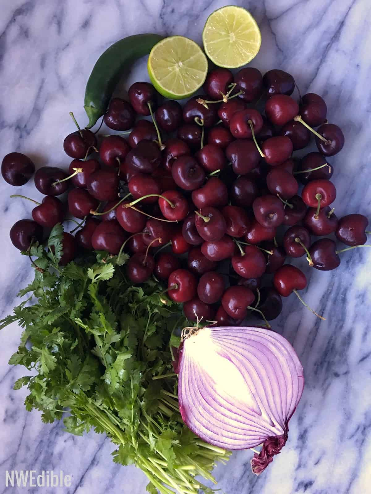 Cherry Salsa0968